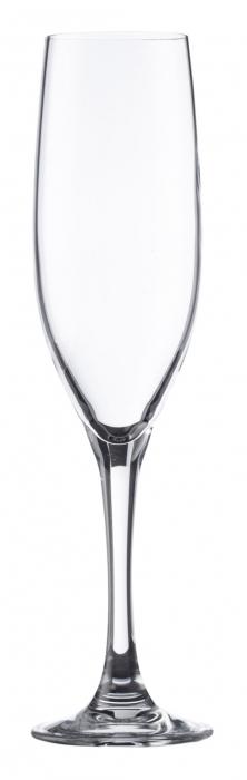 FT Iridion Champagne Flute 21cl/7.4oz